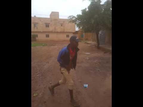 Petit Gimba jr Mdr