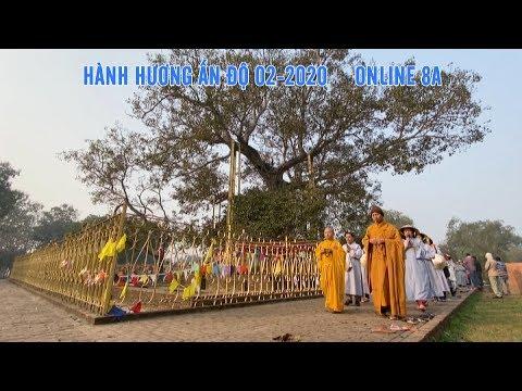 ĐOÀN HÀNH HƯƠNG ĐẠO PHẬT NGÀY NAY CHIÊM BÁI CÂY BỒ-ĐỀ ANADA (ANADA BODHI TREE)