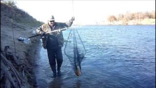 Рыбалка на мангуте в апреле ловля леща