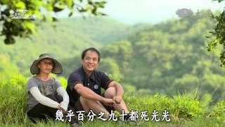 【農夫與他的田】20131026 - 少年郎的有機田