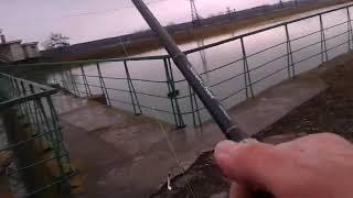 Daiwa silver creek 5 20