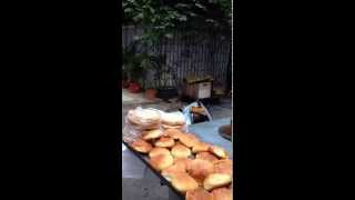 中国生動画深圳路上オレたちウイグル族UyghurmaninShenzhen,China