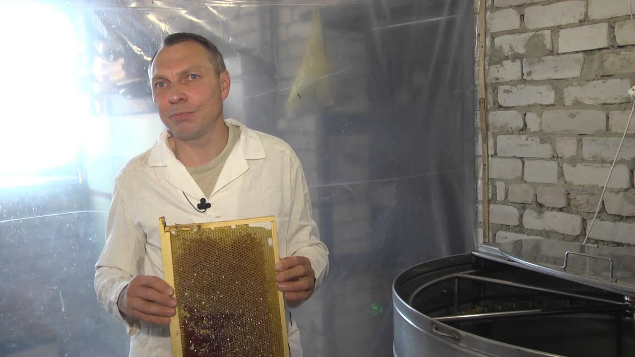 Видео радиальной медогонки Медуница