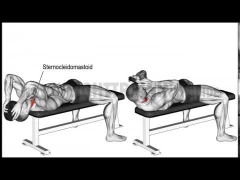 Lying weighted neck flexion 990x566