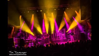 The Disco Biscuits 06/08/08 House Dog Party Favor