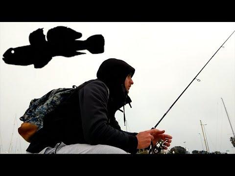 Il video da pescare sulluomo con baffi grandi