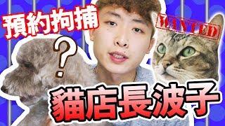 【全城熱話】貓店長波子要被「預約拘捕」? 是貓的錯嗎?[中文字幕]