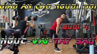 Lịch tập và giáo án cho người mới tập Gym| Buổi 4 : Ngực - Vai - Tay Sau | Nguyễn Hoàng Gym
