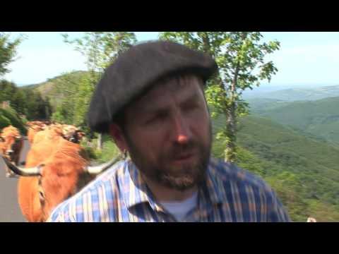 Vacada Solinhac de La Garriga (Galhac)