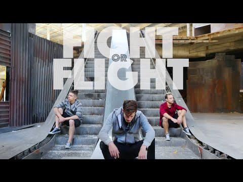 Fight or Flight@PhillipChbeeb @iamemiliodosal@_elderbrook