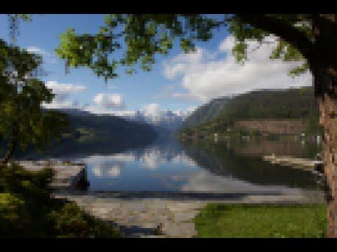 Fjord singel
