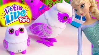 Little Live Pets  Mommy Baby Owl Talking Singing Colorful Pet Queen Elsa Cookieswirlc Toy Unboxing