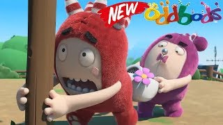 Oddbods Full Episode -  Don't Open The Box - The Oddbods Show Cartoon Full Episodes