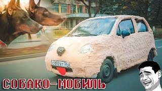 Что будет если превратить автомобиль в СОБАКУ! =))  #Авточелендж