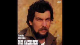 Wabi Daněk - Outsider Waltz