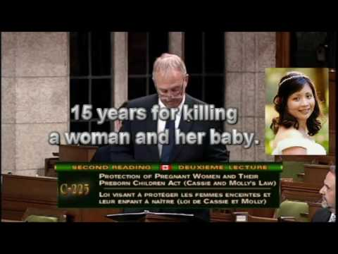 Canadian MP Bill Blair opposes law to protect pregnant women.