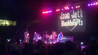 Joan Jett - Backlash (Live)