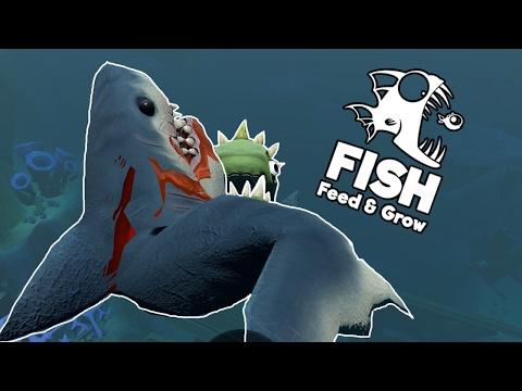 Hình ảnh Youtube -  XÁC CHẾT CÁ MẬP!!!| Feed and Grow: Fish[7]