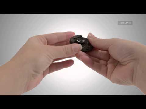 Gribok der Nägel der schwarze Fleck
