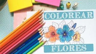🌸 Cómo colorear flores con lápices de colores 🌸 - StephanieVlog