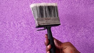 Asian Paints Royale Play Simply Brushing Interior Design