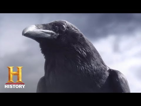 Vikings Season 5 Teaser 'Crow'