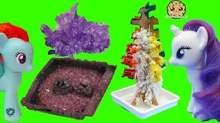 Grown Your Own Rainbow Crystal Tree + Rocks ? - Dollar Tree Crafts with MLP + Gemma Stone