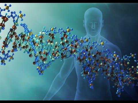 DNA   Técnica que modifica o DNA pode ser chave da cura de muitas doenças