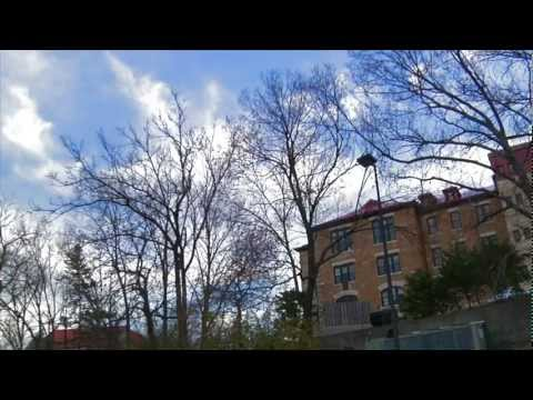 CLICK CLICK—Rev Gusto (HD)