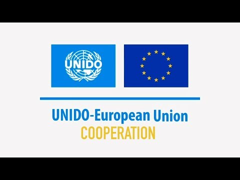 Multilateralism at Work | EU - UNIDO cooperation