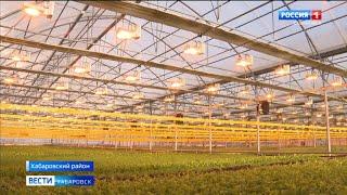 Хабаровским фермерам будут компенсировать затраты на покупку оборудования для тепличных комплексов