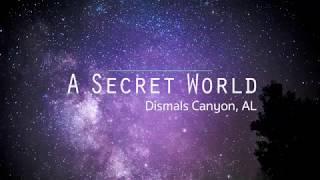A Secret World: Alabama's Dismals Canyon