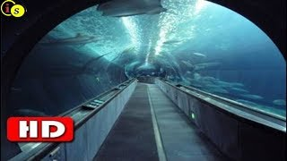 Top 10 Longest Underwater Tunnels In The World !! Information Side