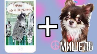 📱Если бы собаки были Siri в Avakin life🐶