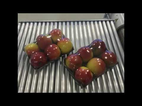 Shrink wrapping of apples in a tray