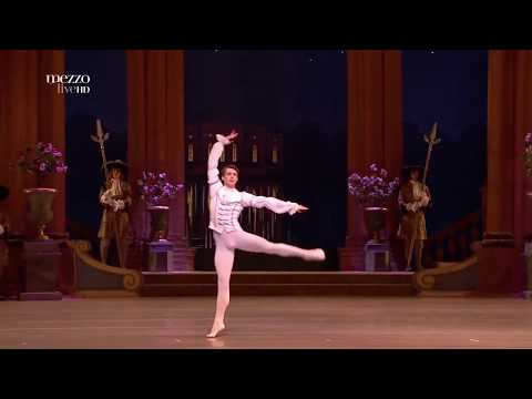 Vladimir Shklyarov Desire variation Act 3
