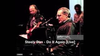 Steely Dan   Do It Again (Live)
