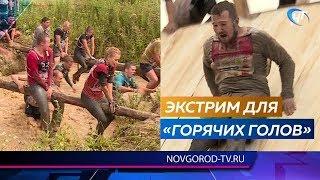 Фестиваль «Горячие головы» собрал под Великим Новгородом почти тысячу участников