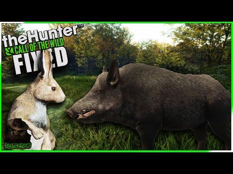 , title : 'European Rabbits FIXED! Melanistic Wild Boar & Diamond Mountain Goat + More! Call of the wild'