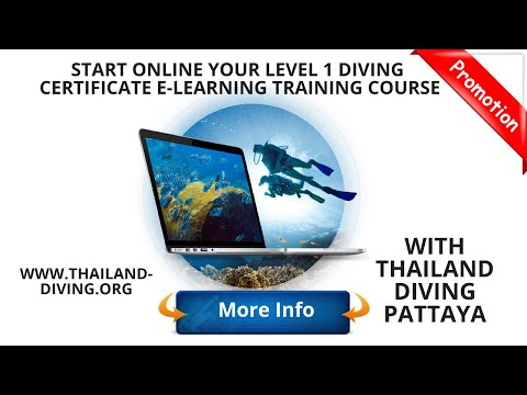 start online your scuba level1 #PADI diving certificate elearning ...