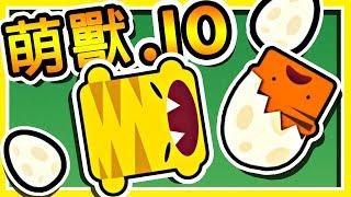 【萌獸.IO】➲ 超可愛【動物進化】!! 從蛋開始選擇自己的進化方式 !!|萌獸大亂鬥 !!