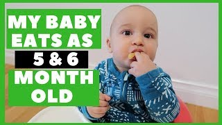 WHAT MY BABY EATS IN THE FIRST WEEK | 5 -  6 MONTHS OLD | BABY LED WEANING