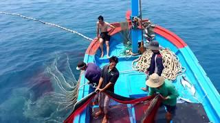 Vietnamese Fish Catching Tour  Tour Trải Nghiệm đánh Bắt Cá Trên Biển