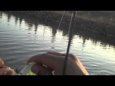Bass Fishing drainage canal (City Limits)