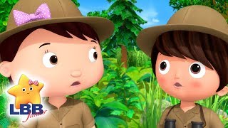 Animals That Camouflage    Little Baby Bum Junior   Kids Songs   LBB Junior   Songs For Kids