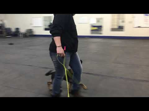 Head up heeling and positioning