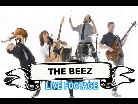 The Beez Video