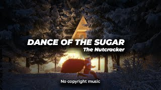 Dance Of The Sugar Plum Fairy - The Nutcracker no copyright