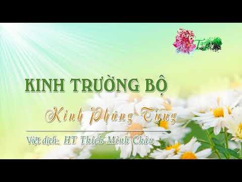 33. Kinh Phúng Tụng (Sangīti sutta)