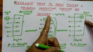Fischer & Haworth projection formulae for Glucose (Biomolecules class 12 chemistry )